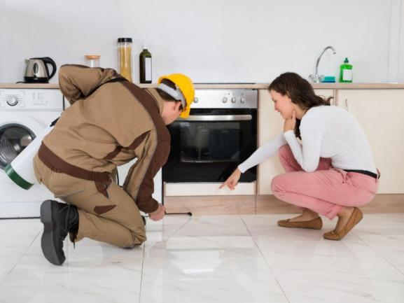 Dynamic Pest Control, 6 Territories for Sale Brisbane and Gold Coast #5184SR image