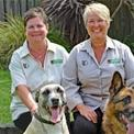 Bark Busters Australia and New Zealand contact person photo