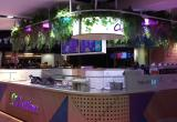 Chatime Rundle Mall, SA - 23 Million Guests...Business For Sale