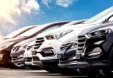 Car Import BusinessBusiness For Sale