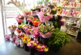 FLORIST SHOP FOR SALE – Northern Gold Coast ...Business For Sale