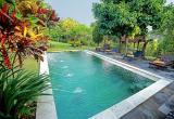 Body Corporate Pool & Garden Services - Secured...Business For Sale