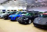 Car Import Business  Business For Sale