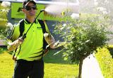 Fox Mowing & Gardening - Franchise - Townsville...Business For Sale