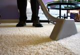 Express Carpet CleaningBusiness For Sale