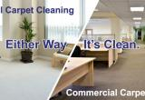 Carpet Cleaning and Pest Control Ipswich...Business For Sale