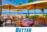 Gold Coast's Hottest Restaurant, Beachside, F...Business For Sale