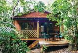 Luxury Rainforest Cottages Aimed at Eco Wildlife... Business For Sale