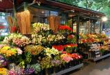 Beautiful Florist Business For Sale Business For Sale