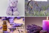 Lavender Shoppe - All Natural Gifts & Products,...Business For Sale