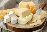 Fully operational cheese manufacturing plant... Business For Sale