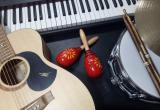 20083 Musical Instrument Retail Store - Well... Business For Sale