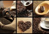 Master Franchise (Coffee Industry) VIC &...Business For Sale