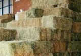 Stock Feed & Farm Supplies - PRICE REDUCTION...Business For Sale