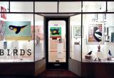 Birds Gallery - KewBusiness For Sale