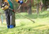 Easy to run garden maintenance business -...Business For Sale