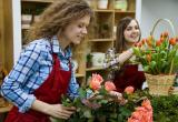 Florist For Sale Caulfield VicinityBusiness For Sale