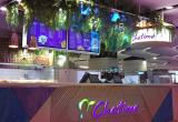 Chatime Cavill Avenue, Gold Coast - Premium...Business For Sale