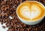 Franchise Cafe at the Best LocationBusiness For Sale