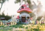 Online E-Commerce Fairy Garden BusinessBusiness For Sale