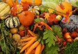 Wholesale Fruit & Veg with Great Potential... Business For Sale