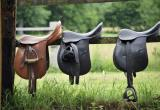 Saddlery & Equine BusinessBusiness For Sale