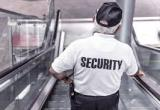 Security Personnel, Crowd Control - The Industry...Business For Sale
