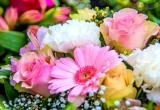 Florist & gift shopBusiness For Sale