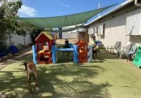 Doggy Day Care & Pet Grooming - Townsville