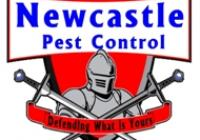 Newcastle Pest Franchise - Vendor Finance Available