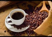 COFFEE ON THE GO !!! - COVID PROOF !!!Business For Sale