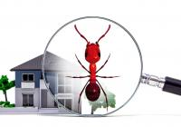 Manufacturer - Termite Control, Building...Business For Sale