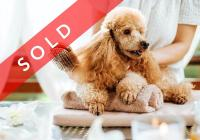 SOLD! Dog Daycare & Grooming BusinessBusiness For Sale