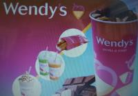 ESTABLISHED WENDY'S FRANCHISE SHOWING PROSITIVE GROWTH ASKING...