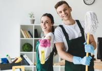 20190 Domestic Cleaning Franchise