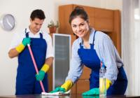 21237 Sunshine Coast Cleaning Business – Domestic and Commercial C...