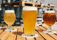 Geelong's Self Brewing ExperienceBusiness For Sale