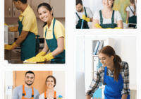 Better Bond Cleaning-Franchise-Townsville...Business For Sale