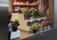 Profitable Florist in Developing Perth Metro...Business For Sale