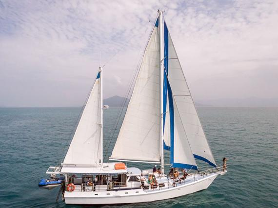 Whitsunday Diving, Sailing & Boat Charter/Hire Business For