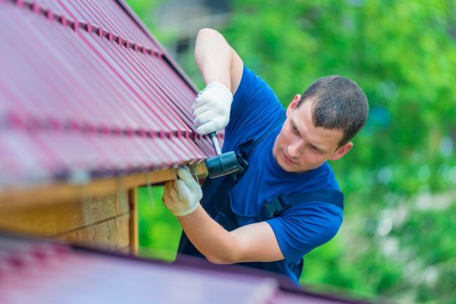 21059 Pest Control Business -  Possum Removal and Control image 1