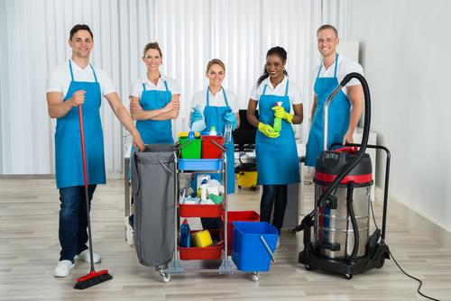21210 Established Commercial Cleaning Business image 1