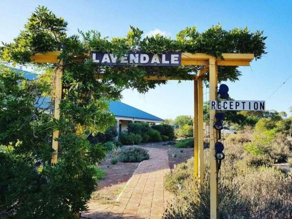 Lavendale Farmstay - Cottages and 54 Hectares – Western Australia image 4