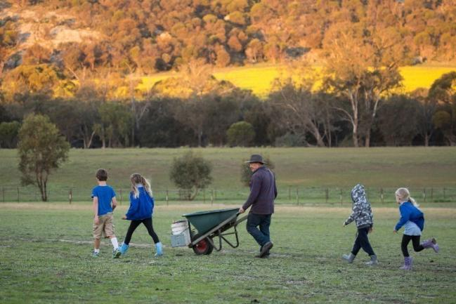 Lavendale Farmstay - Cottages and 54 Hectares – Western Australia image 1