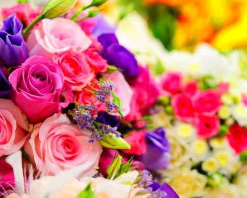 Profitable Florist in Developing Perth Metro image 2